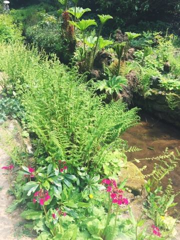 gardens-summer-pretty-national-trust-stream