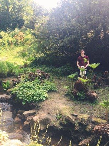 summer-pretty-national-trust-garden-stream